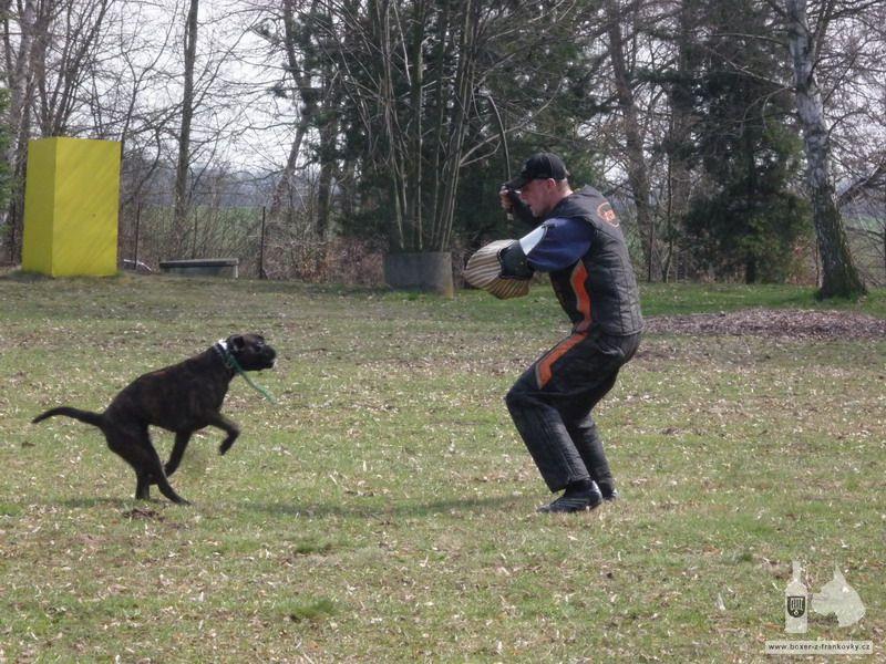 předchozí fotografie: Velikonoční výcvik 2010 #6