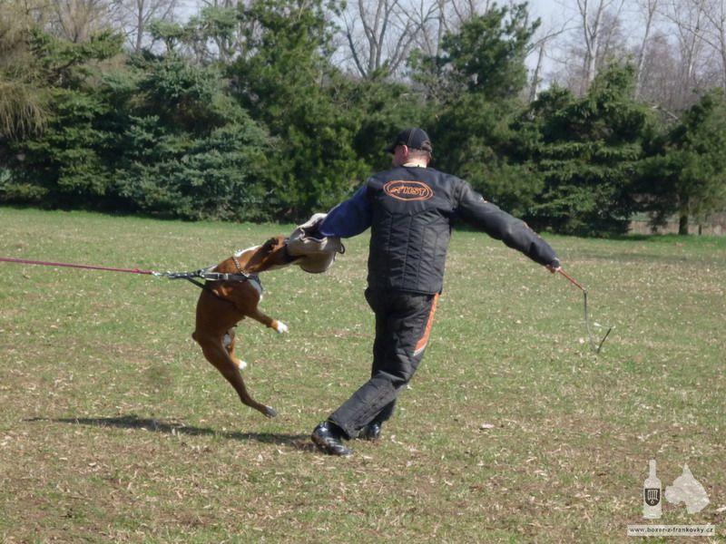 předchozí fotografie: Velikonoční výcvik 2010 #3