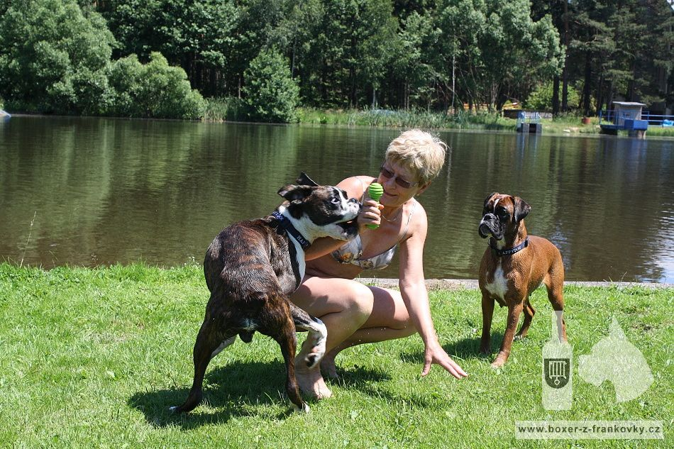 předchozí fotografie: Dara s Dastym - vodní hrátky 7