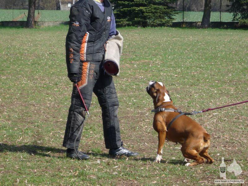 předchozí fotografie: Velikonoční výcvik 2010 #1